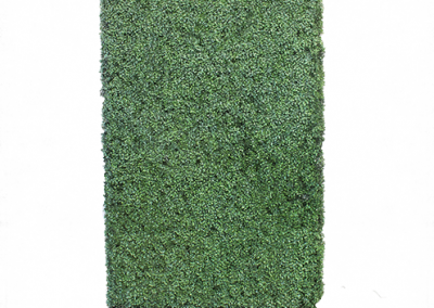 Green Hedge 8'x4'