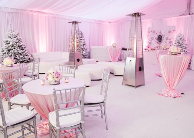 Pink Winter Wonderland Themed Baby Shower