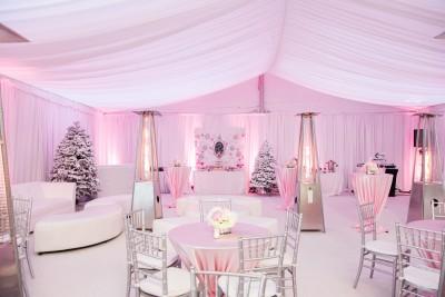 A Pink Winter Wonderland Baby Shower
